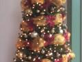 Tree-C-Gold-Burg